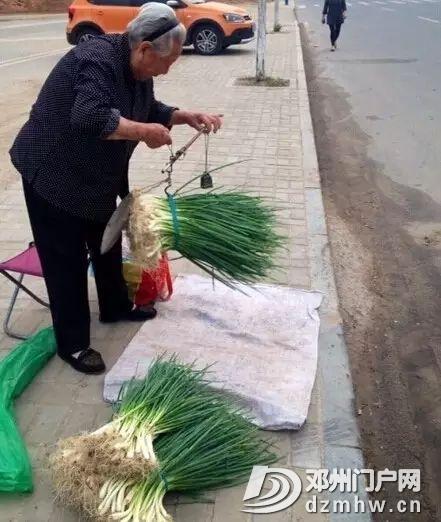 最新!凌晨6点,邓州菜市场拍到的一幕… - 邓州门户网 邓州网 - e245ef528f603959344c2bc6c9d82ada.jpg