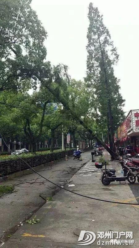 南三环部分电线被刮断,来往行人车辆请注意安全 - 邓州门户网|邓州网 - c256e6554482602cf5a93dcbbfa66f97.jpg