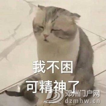 节后第一天的你!!! - 邓州门户网|邓州网 - 163444c96elj8lnmfemqkm.jpg